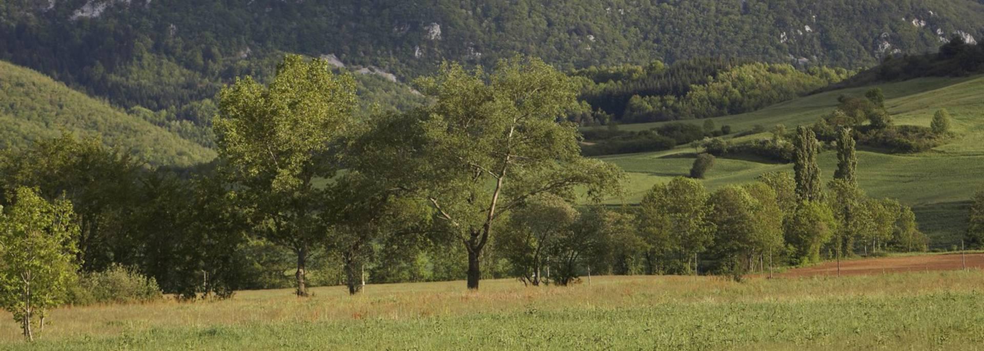 Paysage du Quercorb