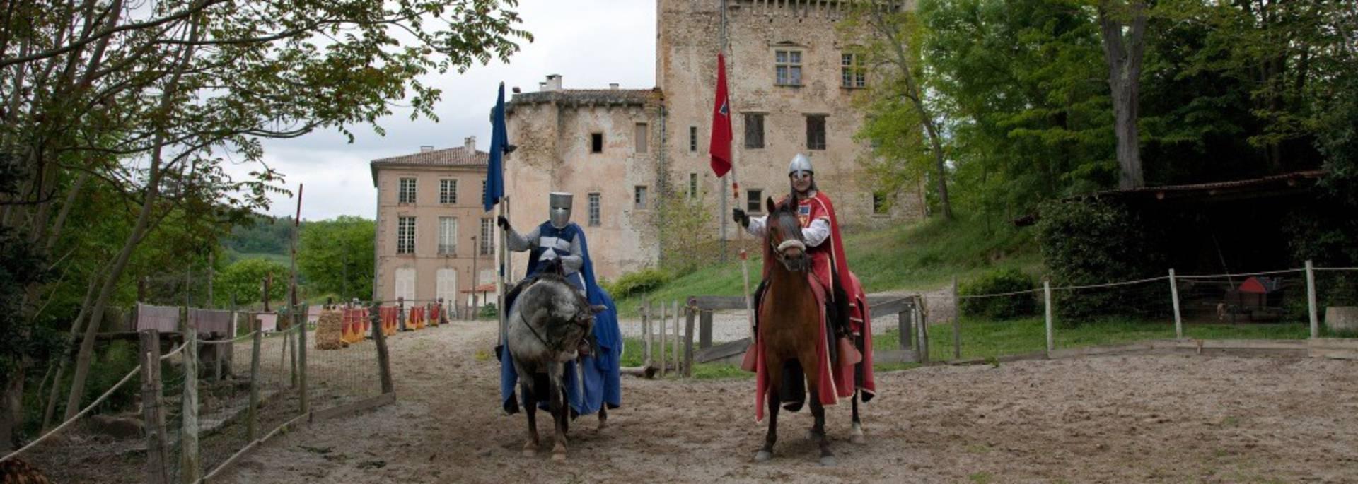 Die Burg von Chalabre