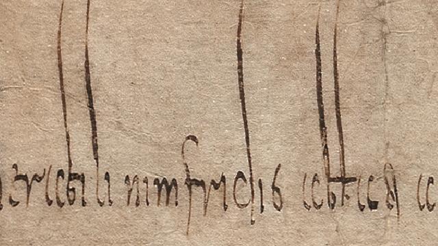 Nimfridus