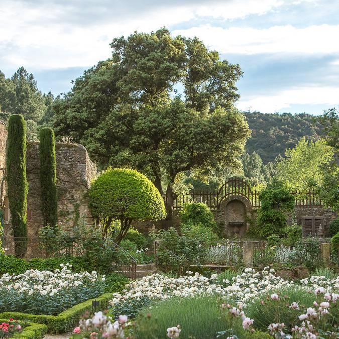 Dans les jardins de l'abbaye de Fontfroide