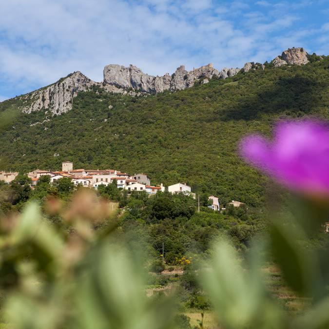 Village de Duilhac-sous-Peyrepertuse