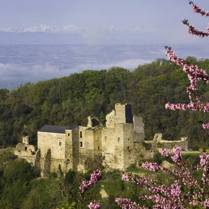 Die Burg Saissac